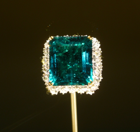 Natural_History_Museum_-_Chalk_Emerald